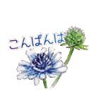 野に咲く花のスタンプ♫(個別スタンプ:03)