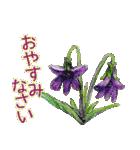 野に咲く花のスタンプ♫(個別スタンプ:05)