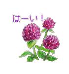 野に咲く花のスタンプ♫(個別スタンプ:08)