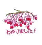 野に咲く花のスタンプ♫(個別スタンプ:12)