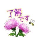 野に咲く花のスタンプ♫(個別スタンプ:13)