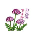 野に咲く花のスタンプ♫(個別スタンプ:14)