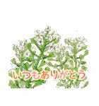 野に咲く花のスタンプ♫(個別スタンプ:15)