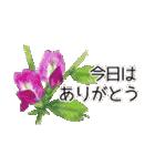 野に咲く花のスタンプ♫(個別スタンプ:16)