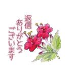野に咲く花のスタンプ♫(個別スタンプ:20)