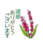 野に咲く花のスタンプ♫(個別スタンプ:21)