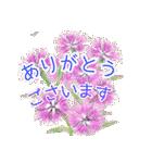野に咲く花のスタンプ♫(個別スタンプ:22)