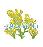野に咲く花のスタンプ♫(個別スタンプ:24)