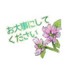 野に咲く花のスタンプ♫(個別スタンプ:31)