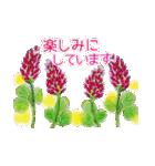 野に咲く花のスタンプ♫(個別スタンプ:35)