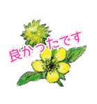 野に咲く花のスタンプ♫(個別スタンプ:36)