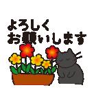 デカ文字黒猫のおめでとう, お祝,気遣stamp(個別スタンプ:14)
