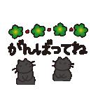 デカ文字黒猫のおめでとう, お祝,気遣stamp(個別スタンプ:24)