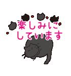 デカ文字黒猫のおめでとう, お祝,気遣stamp(個別スタンプ:26)