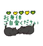 デカ文字黒猫のおめでとう, お祝,気遣stamp(個別スタンプ:38)