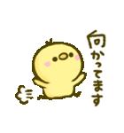 ふんわり♡ぴよまろ(個別スタンプ:07)