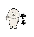 愛すべきpokoちゃん(個別スタンプ:01)