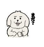愛すべきpokoちゃん(個別スタンプ:03)
