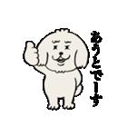 愛すべきpokoちゃん(個別スタンプ:05)