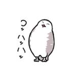 無難なトリさんのスタンプ-シロフクロウ編-(個別スタンプ:15)