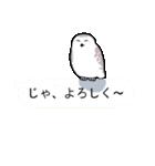 無難なトリさんのスタンプ-シロフクロウ編-(個別スタンプ:24)