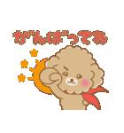 ふわっとトイプー 【ふんわり春スタンプ】(個別スタンプ:23)