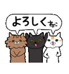 キョウさんちのネコたち(個別スタンプ:01)