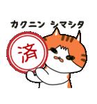 キョウさんちのネコたち(個別スタンプ:03)