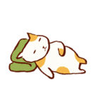 就眠にまつわるネコ