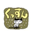 ちょっとまじめな猫太郎(個別スタンプ:27)