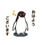 気さくなペンギン(個別スタンプ:02)
