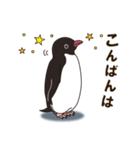 気さくなペンギン(個別スタンプ:04)