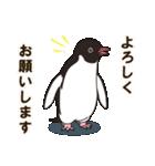 気さくなペンギン(個別スタンプ:11)