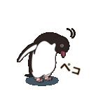 気さくなペンギン(個別スタンプ:12)