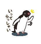 気さくなペンギン(個別スタンプ:18)