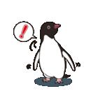 気さくなペンギン(個別スタンプ:25)