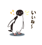 気さくなペンギン(個別スタンプ:28)