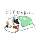 敬語にゃんころ(個別スタンプ:17)