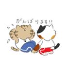 敬語にゃんころ(個別スタンプ:22)