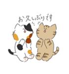 敬語にゃんころ(個別スタンプ:24)