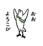 ふろしき文鳥 その三(個別スタンプ:01)