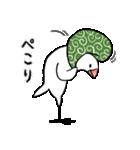 ふろしき文鳥 その三(個別スタンプ:05)