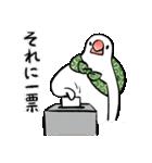 ふろしき文鳥 その三(個別スタンプ:08)