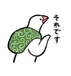 ふろしき文鳥 その三(個別スタンプ:14)