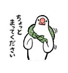 ふろしき文鳥 その三(個別スタンプ:17)