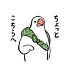 ふろしき文鳥 その三(個別スタンプ:19)