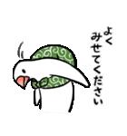 ふろしき文鳥 その三(個別スタンプ:21)