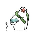 ふろしき文鳥 その三(個別スタンプ:25)