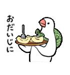 ふろしき文鳥 その三(個別スタンプ:26)
