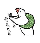 ふろしき文鳥 その三(個別スタンプ:29)